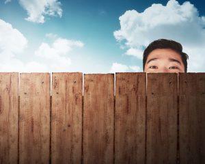 Denver fence